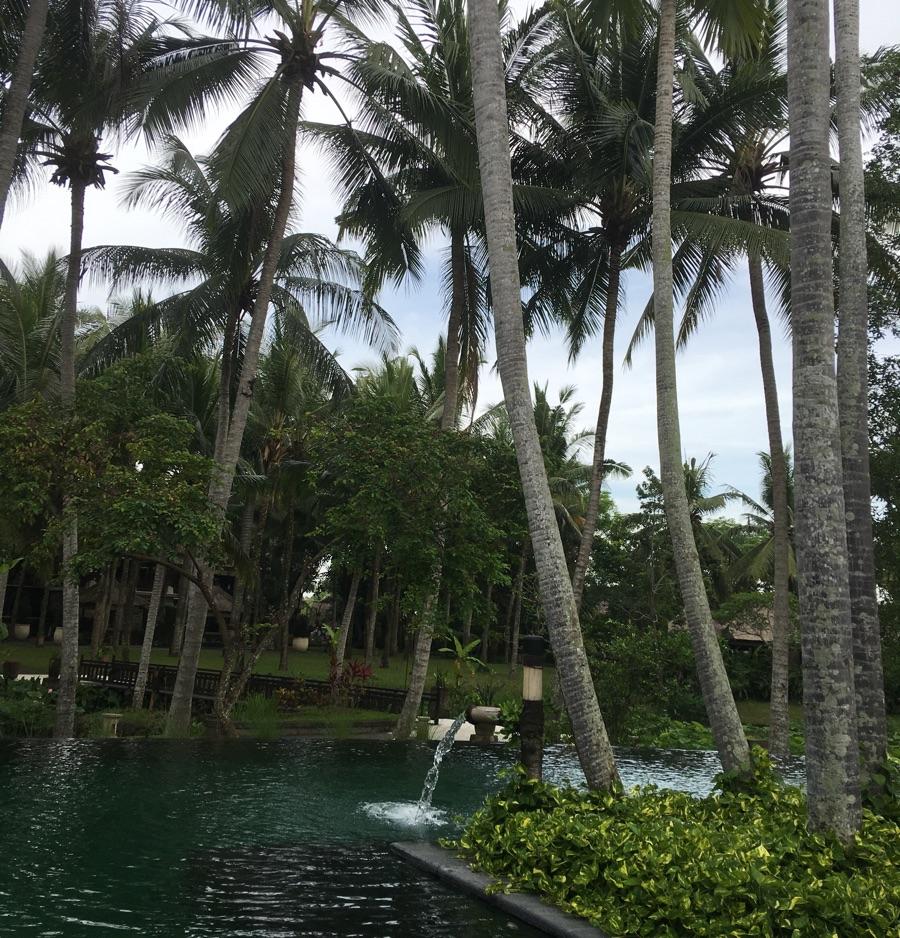 Indonesia Bali gardens