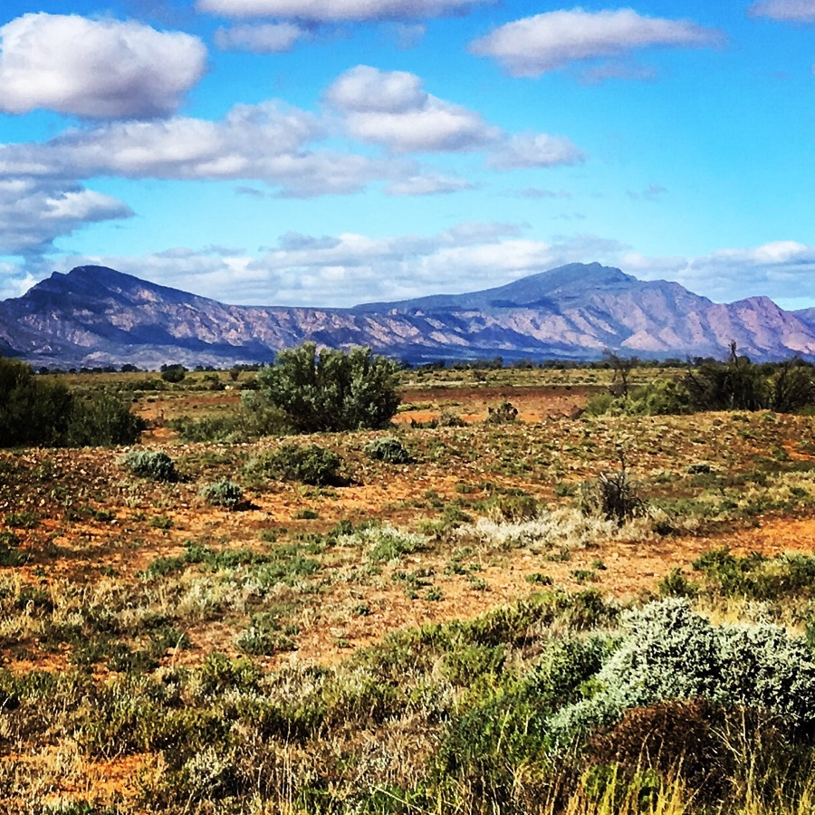 Drew Brown Landscapes and Stone - Flinders Ranges South Australia
